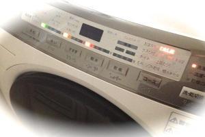 パペリナ洗濯2