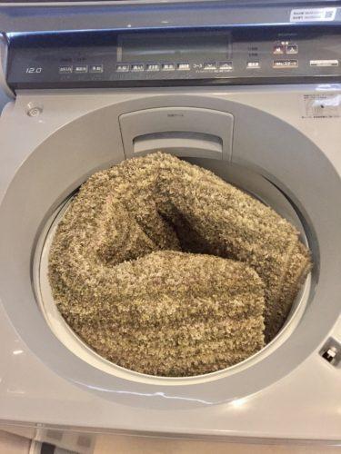 カーペット自宅で洗濯